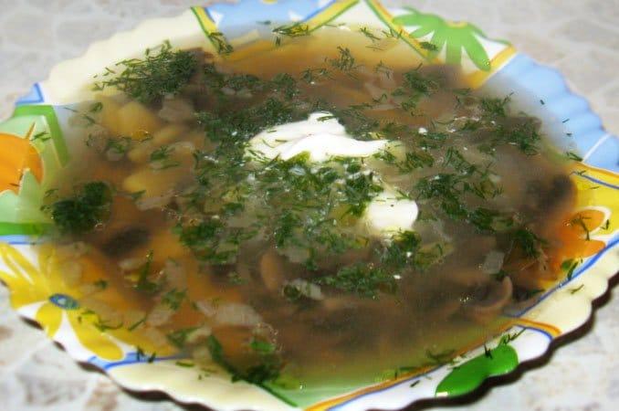 Грибной суп - рецепт с фото