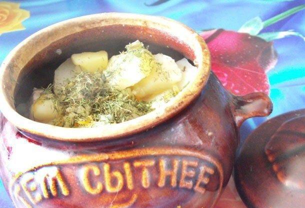 Жаркое в горшочках, по-домашнему, со свининой и грибами