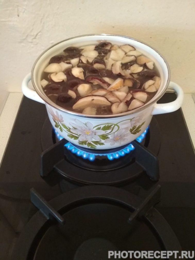 Фото рецепта - Супчик из белых грибов - шаг 1