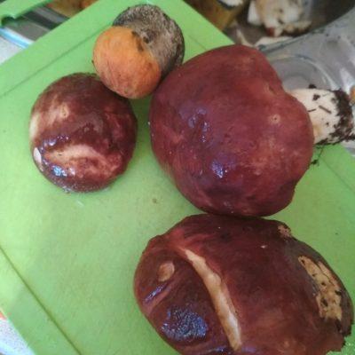 Супчик из белых грибов - рецепт с фото