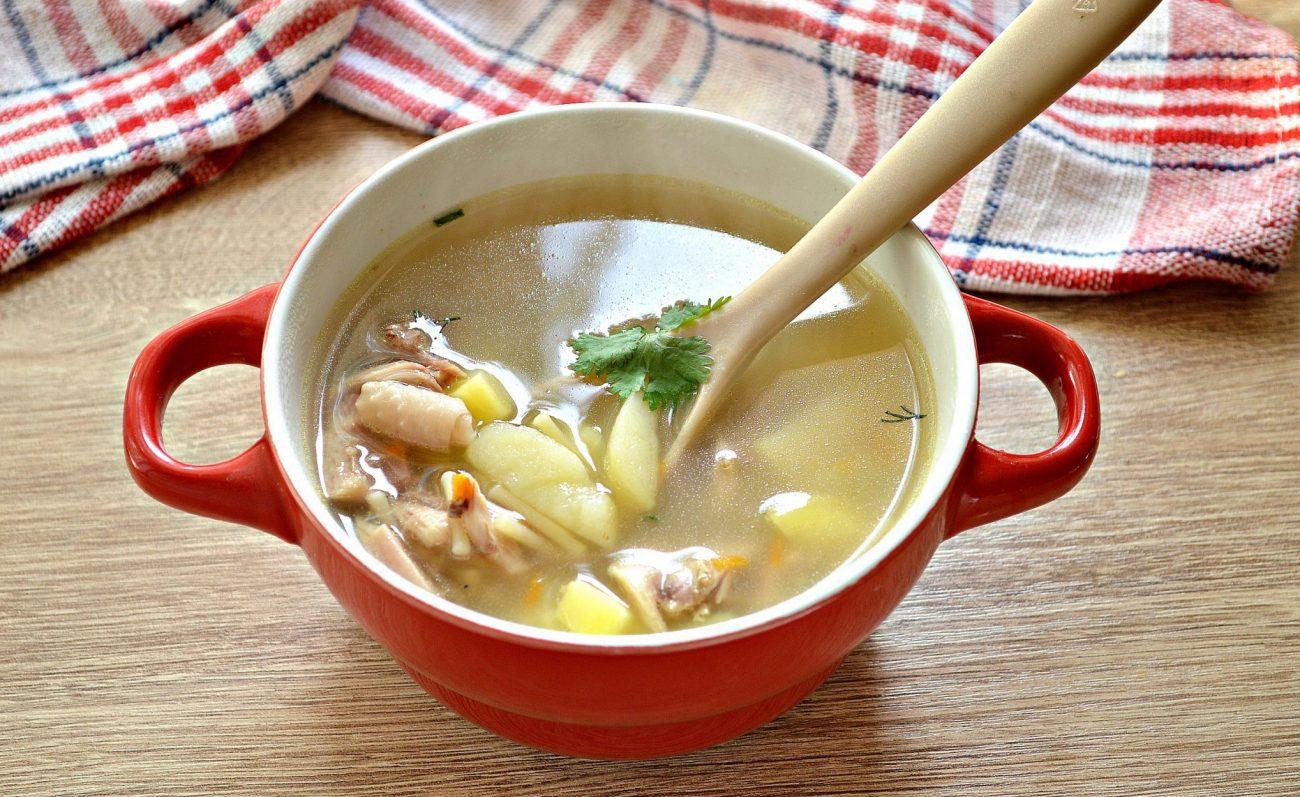 Суп из гуся с вермишелью