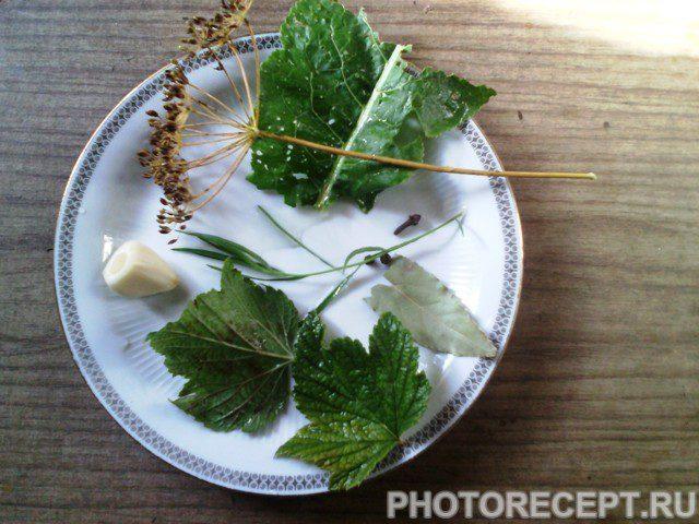 Фото рецепта - Соленые, хрустящие огурцы по-деревенски - шаг 2