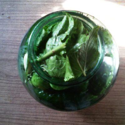 Фото рецепта - Соленые, хрустящие огурцы по-деревенски - шаг 4