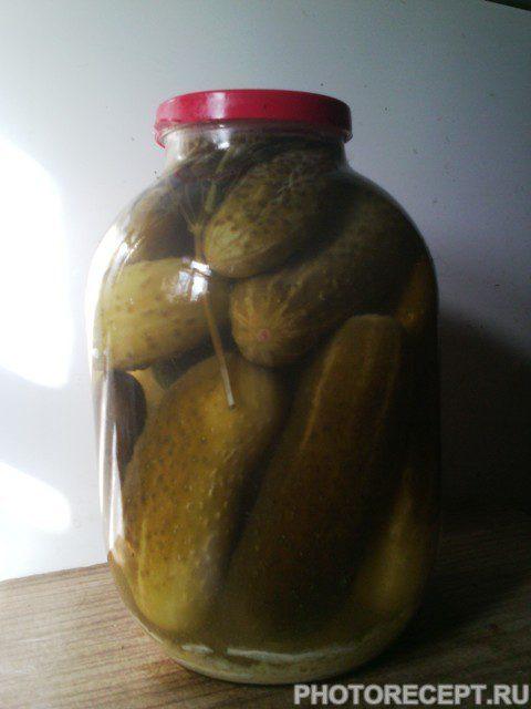 Фото рецепта - Соленые, хрустящие огурцы по-деревенски - шаг 6