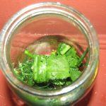 Фото рецепта - Квашеные огурцы - шаг 2