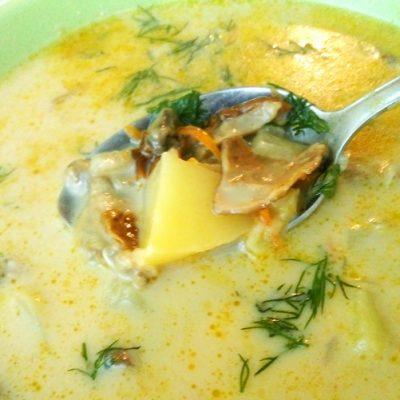Сырный суп с сушеными грибами - рецепт с фото