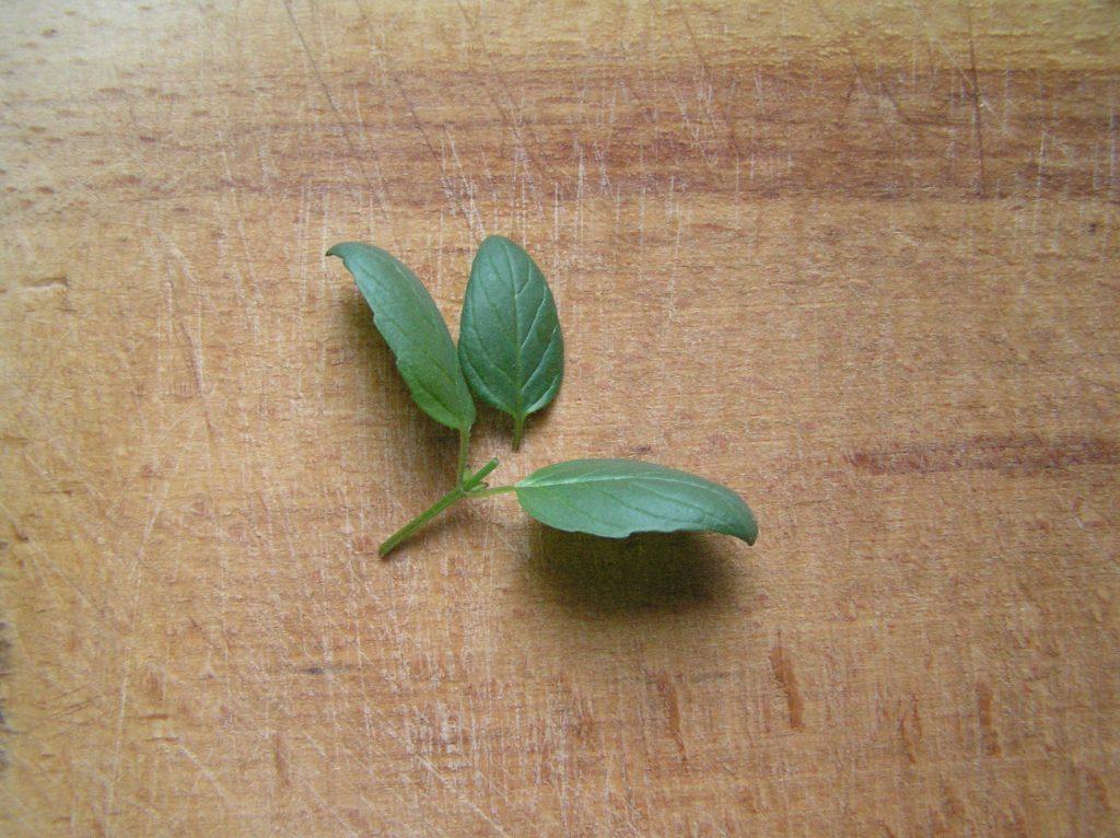 Фото рецепта - Чай из ромашки и мяты - шаг 2