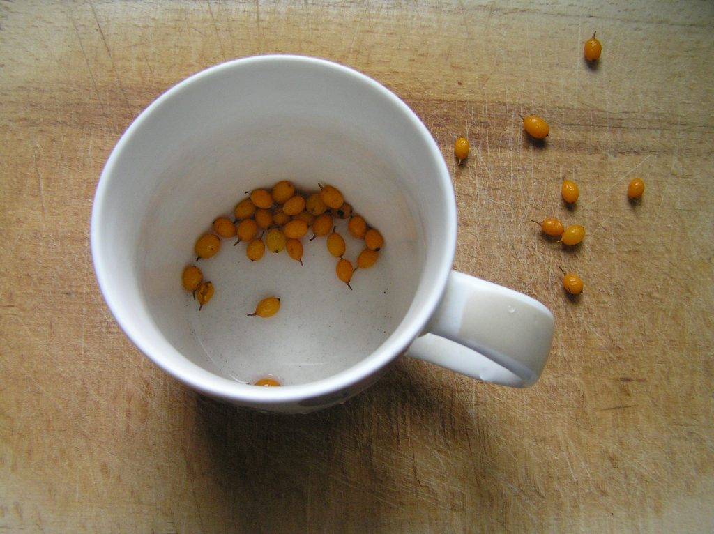 Фото рецепта - Витаминный напиток из облепихи - шаг 2