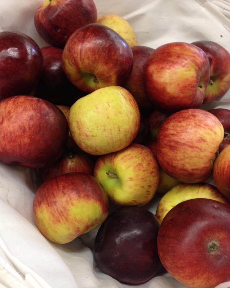 Фото рецепта - Яблоки, сушёные в духовке - шаг 1
