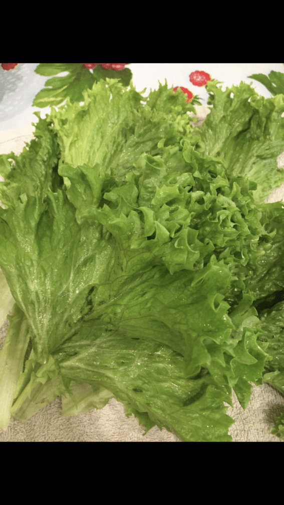 Фото рецепта - Рулеты из листьев салата с сыром и яйцами - шаг 2