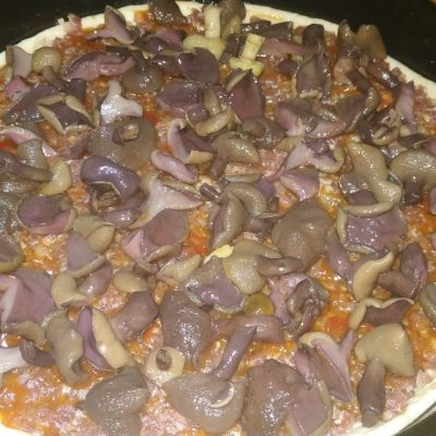 Фото рецепта - Домашняя пицца на дрожжевом тесте с фаршем и грибами - шаг 5