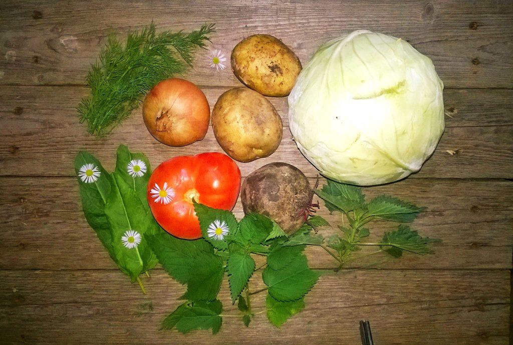 Фото рецепта - Вегетарианский борщ - шаг 1