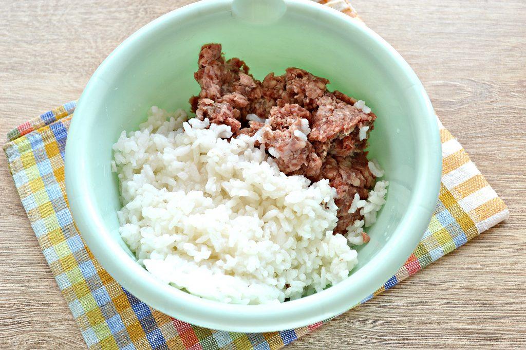 Фото рецепта - Мясной пирог с рисом - шаг 1