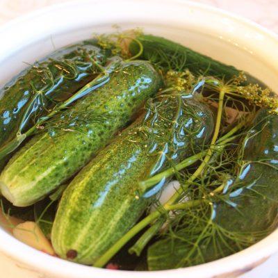 Быстрые малосольные огурцы - рецепт с фото