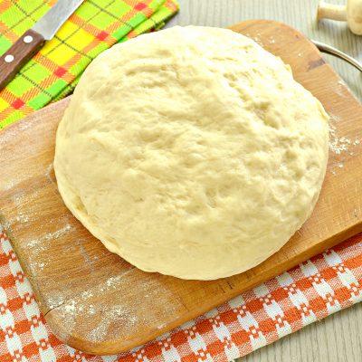 Быстрое дрожжевое тесто на воде для пирожков - рецепт с фото