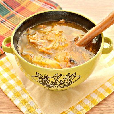 Домашние щи со свининой и грибами - рецепт с фото