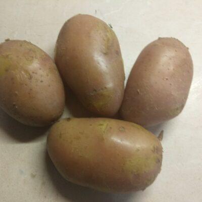 Фото рецепта - Картофель, фаршированный свиной грудинкой и укропом - шаг 1