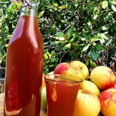 Домашний яблочный компот - рецепт с фото