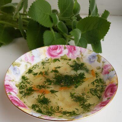 Лёгкий суп на утином бульоне - рецепт с фото