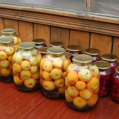 Яблоки консервированные - рецепт с фото