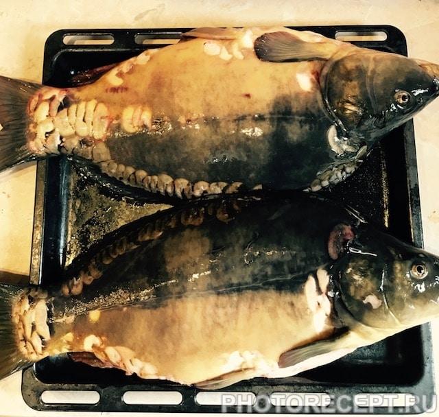 Фото рецепта - Карп запеченный в духовке - шаг 1