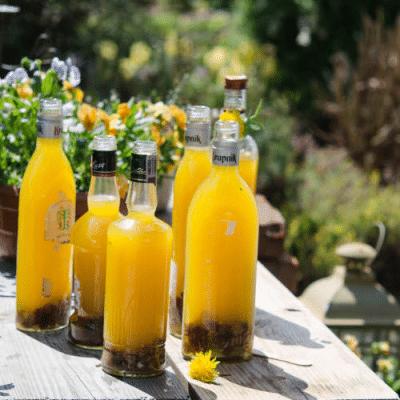Вино из одуванчиков — готовим целебный напиток - рецепт с фото